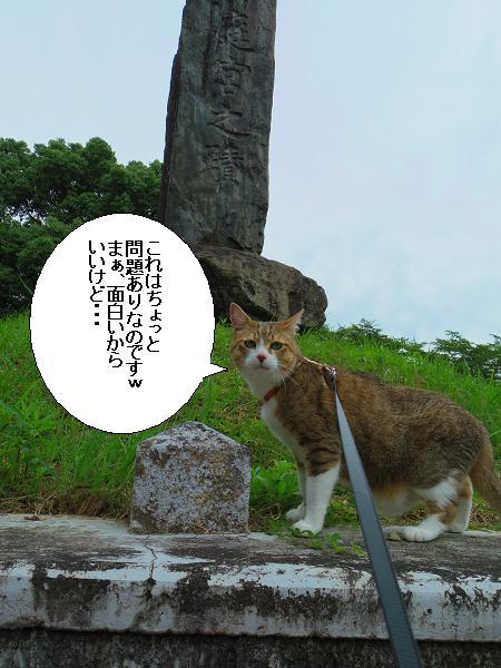 朝倉橘広庭6
