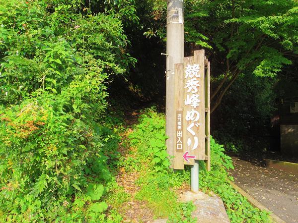 青の洞門11