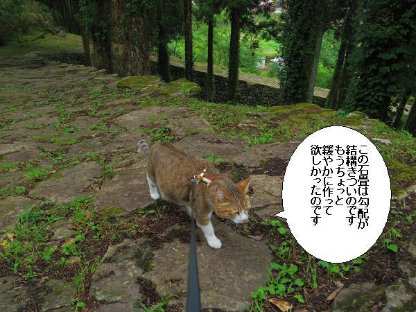 末廣神社7