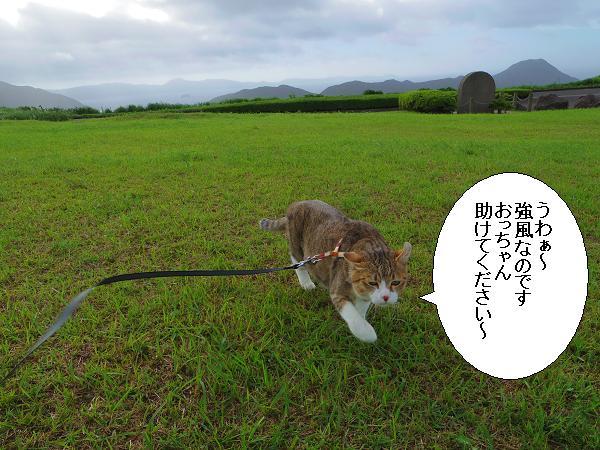 川内峠10