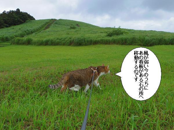 川内峠12