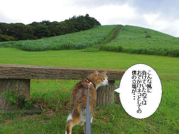 川内峠11