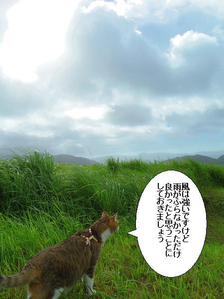 川内峠17
