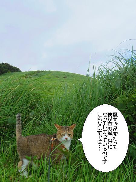 川内峠16