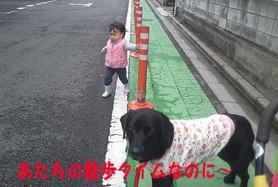 ポポと散歩2