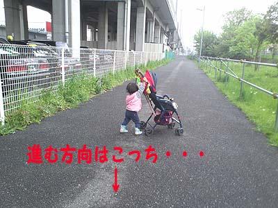 ポポと散歩3