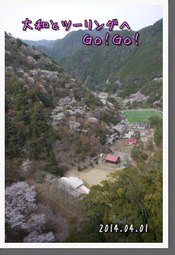 2014年4月1日 下北山スポーツ公園 (36)