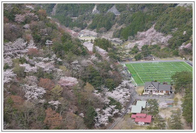2014年4月1日 下北山スポーツ公園 (7)