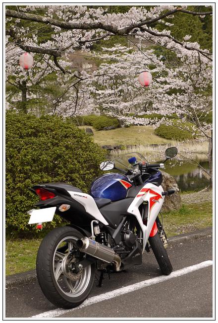 2014年4月1日 下北山スポーツ公園 (16)