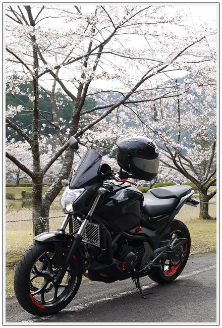 2014年4月1日 下北山スポーツ公園 (24)