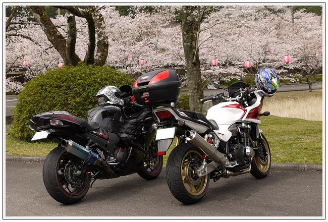 2014年4月1日 下北山スポーツ公園 (17)