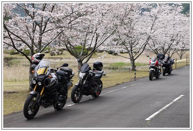 2014年4月1日 下北山スポーツ公園 (23)