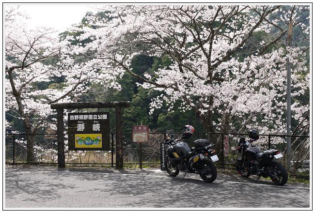 2014年4月1日 下北山スポーツ公園 (28)