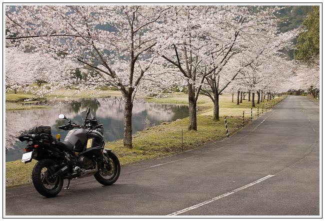 2014年4月1日 下北山スポーツ公園 (35)