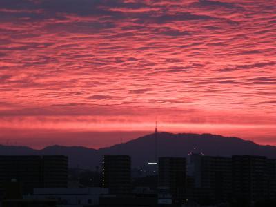 Dawn+Nagoya1409_convert_20140916081919.jpg