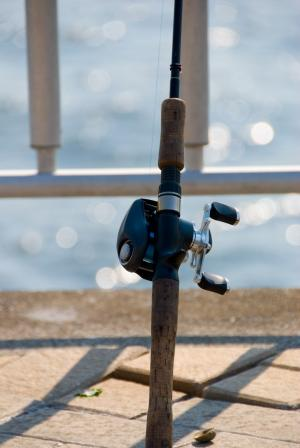Fishing+Rod_convert_20140810205049.jpeg