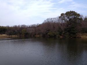 Meitokupond_convert_20140220162741.jpg