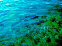 Oceanbottm_convert_20140321212650.jpg