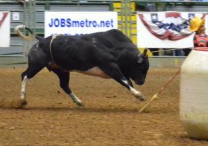bullfight_convert_20140227195135.jpg