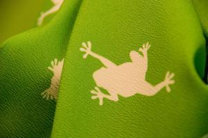 frog2_convert_20140423171240.jpeg