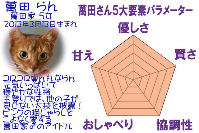 #217_17らん5角形パラメーターm