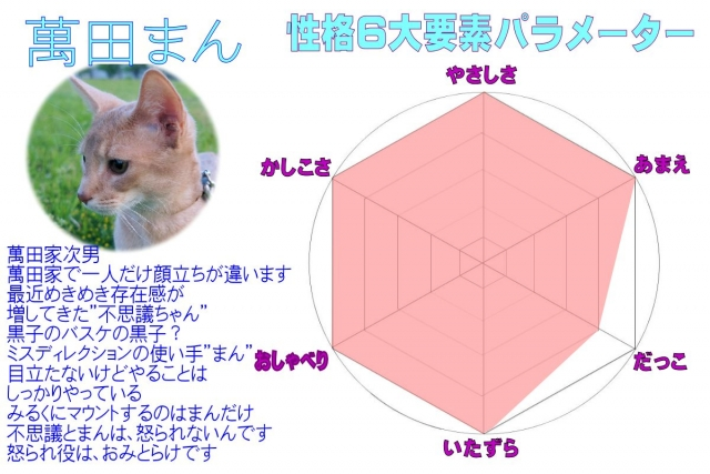 #227_15萬田パラメーター(3)