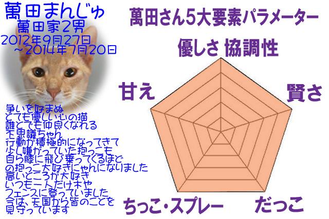 #227_16_5角形パラメーターまん