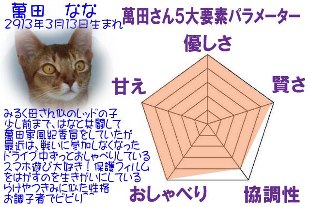 #232_なな5角形パラメーター