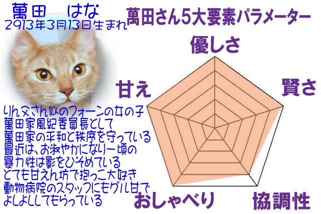 #245_20はな5角形パラメーター