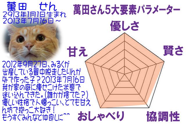 #247せん5角形パラメーターmjpg