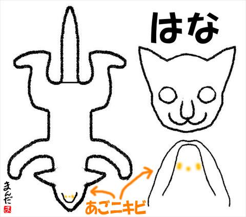 #256_6_はな