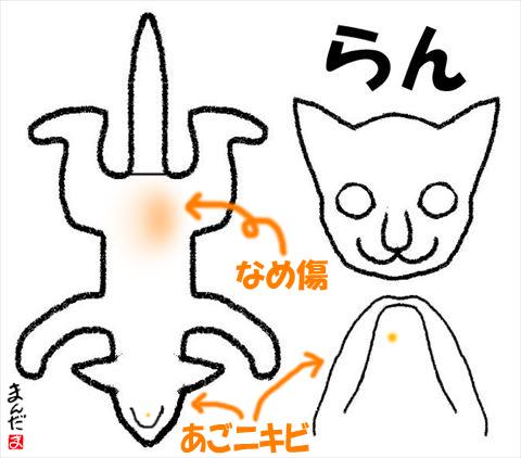 #256_10_らん