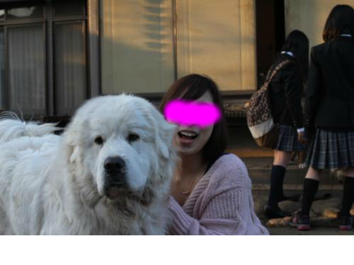 snap_luna214hana612_20142693414.jpg