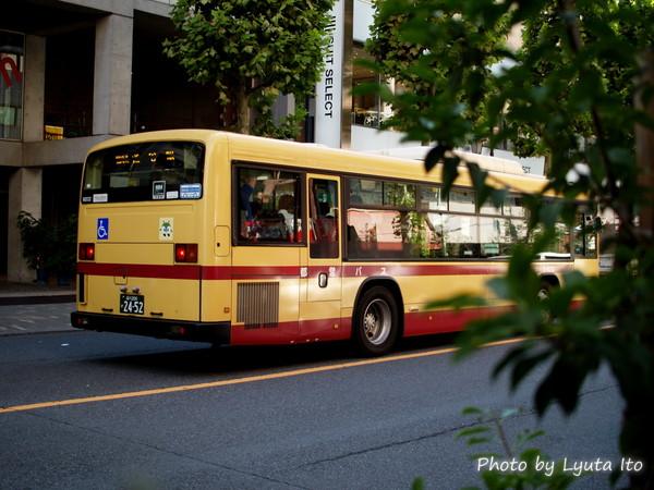 P1016087.jpg