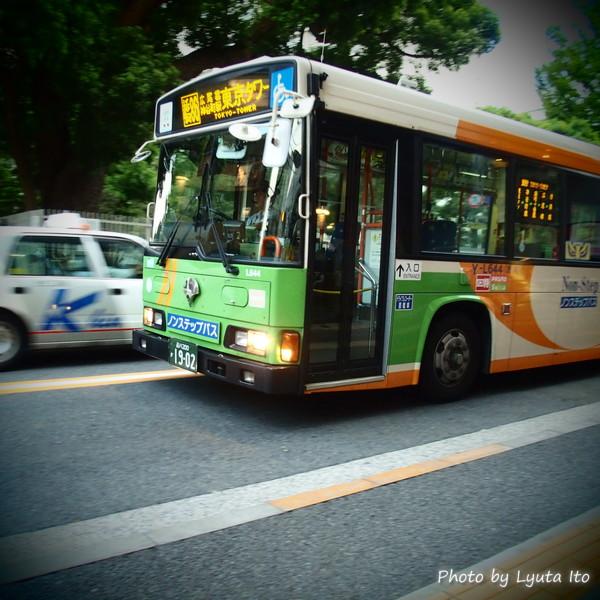 P8071980.jpg