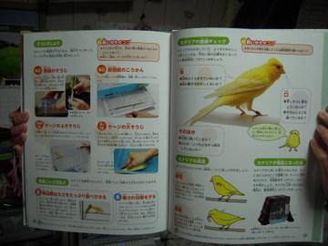 DSCN9369.jpg