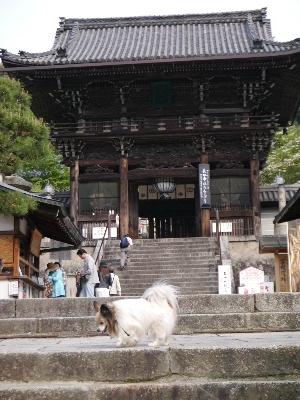 2014奈良12
