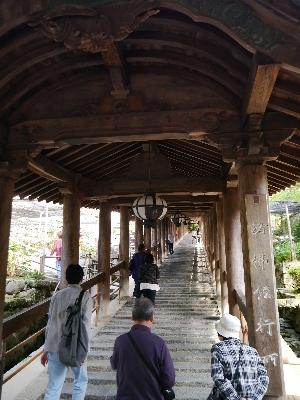 2014奈良15