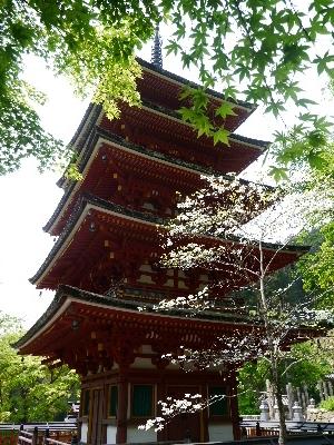 2014奈良37