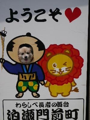 2014奈良47