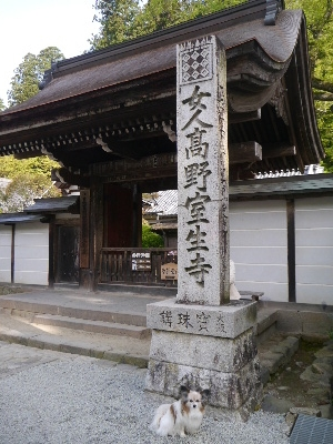 2014奈良2−4