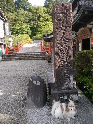 2014奈良2−1