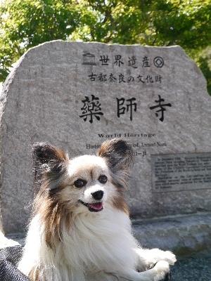 2014奈良2−60