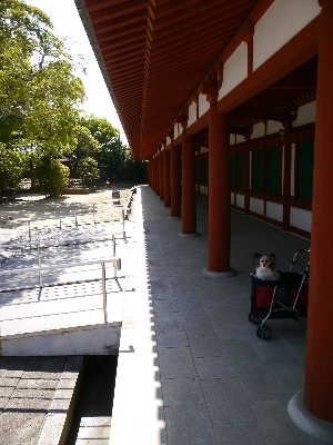 2014奈良2−67