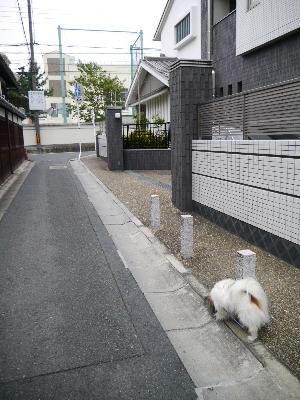 2014奈良3−1