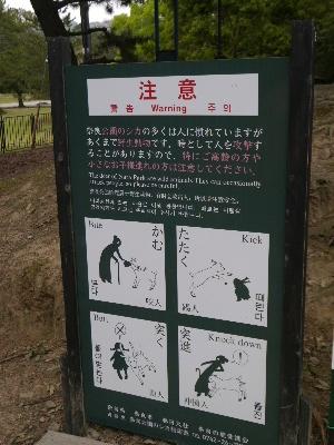 2014奈良3−7