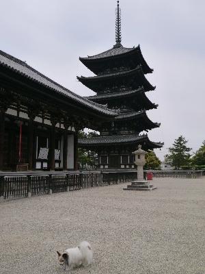 2014奈良3−8