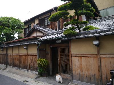 2014奈良3−13