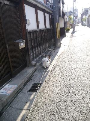 2014奈良4−1