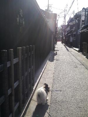 2014奈良4−4